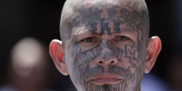 Trump Culpa A Obama De Permitir Mara MS-13.