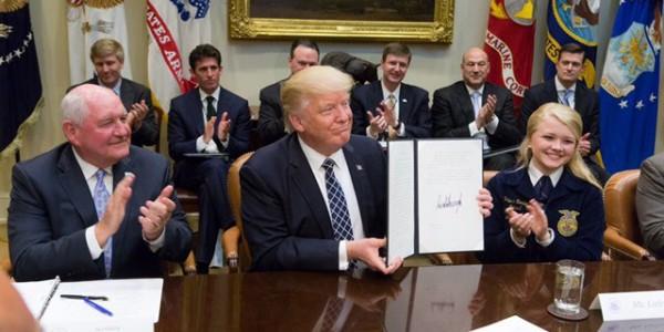 Casa Blanca Presume Logros De Donald Trump En Sus Primeros 100 Días.