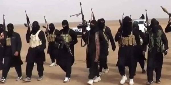 Estado Islámico No Desaparece, Migra.