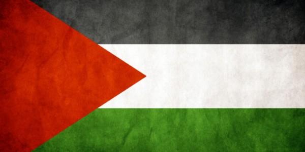 Si Los Palestinos Quieren Un Estado, Que Hagan Lo Que Hicieron Los Sionistas.
