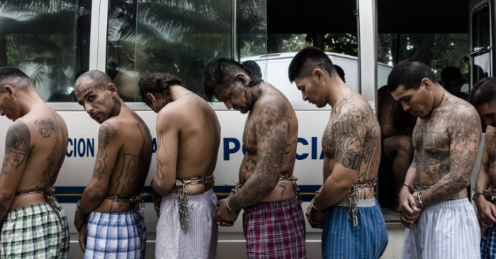 """Juez Declara """"organización Terrorista"""" A La MS-13 Y Condena A Decenas De Pandilleros A Más De 100 Años De Cárcel."""
