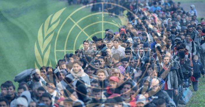 Migración De Reemplazo: El Plan De La ONU Para Promover La Inmigración Masiva En Europa Y EE.UU.