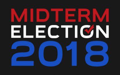 Datos Interesantes Sobre Las Elecciones Legislativas Del 2018 En EEUU